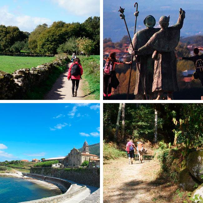 El Camino Francés y el Camino Portugués con CaminoWays.com