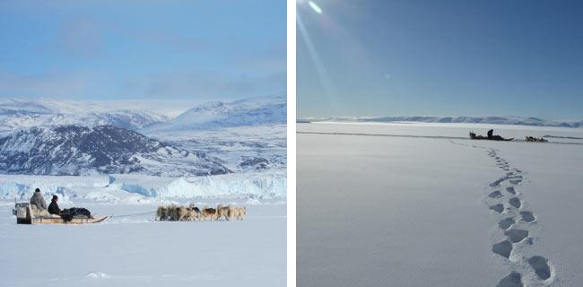 """viaje a Groenlandia: """"Exploración con trineo de perros en Thule"""""""