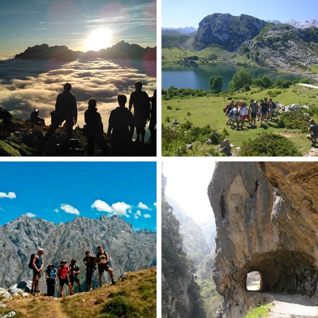 Rumbo a Picos ¡Especialistas en viajes de senderismo en Picos de Europa!