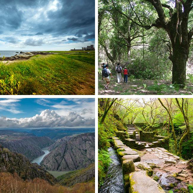 RIBEIRA SACRA, un viaje de naturaleza y cultura